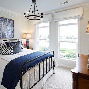 ワシントンD.C.のトランジショナルスタイルのおしゃれな寝室 (グレーの壁、カーペット敷き) のレイアウト