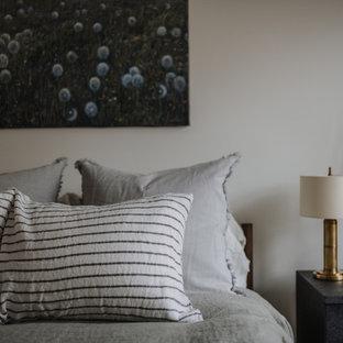 Foto di una camera da letto stile loft moderna con pareti bianche, parquet chiaro, camino bifacciale e cornice del camino in intonaco