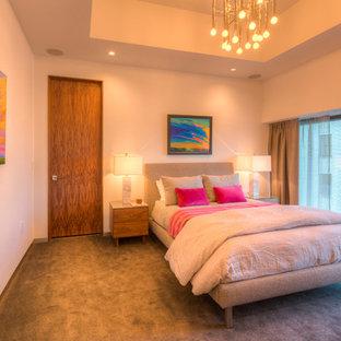 Modelo de habitación de invitados moderna, extra grande, con paredes blancas y moqueta