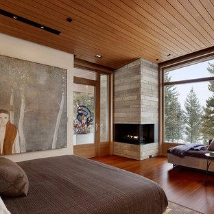 Imagen de dormitorio contemporáneo con chimenea de esquina