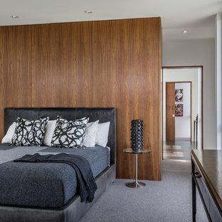 ミネアポリスのコンテンポラリースタイルのおしゃれな主寝室 (白い壁、カーペット敷き、暖炉なし)