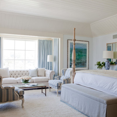 Bedroom - large traditional master bedroom idea in Los Angeles with blue walls and no fireplace