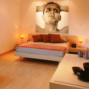 Design ideas for a modern bedroom in Other.