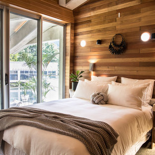 This is an example of a beach style bedroom in Cairns with brown walls and no fireplace.