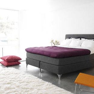 マイアミの大きいコンテンポラリースタイルのおしゃれな主寝室 (白い壁、コンクリートの床、暖炉なし) のインテリア