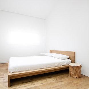 Esempio di una camera da letto minimalista di medie dimensioni con pavimento in compensato