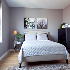 Transitional Bedroom by DawnElise Interiors