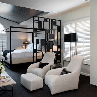 Inspiration for a medium sized contemporary master bedroom in Other with white walls, carpet and no fireplace.