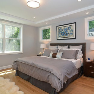 Inspiration for a mid-sized transitional master light wood floor bedroom remodel in Chicago with gray walls and no fireplace