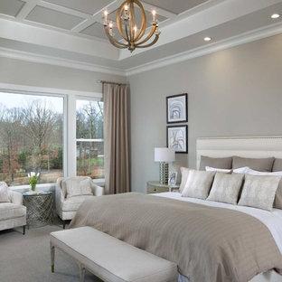 他の地域のビーチスタイルのおしゃれな主寝室 (グレーの壁、カーペット敷き、暖炉なし、グレーの床) のインテリア