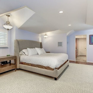 Example of a large trendy master medium tone wood floor and red floor bedroom design in Baltimore with blue walls