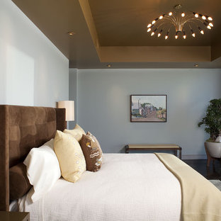 Example of a trendy bedroom design in Austin with blue walls