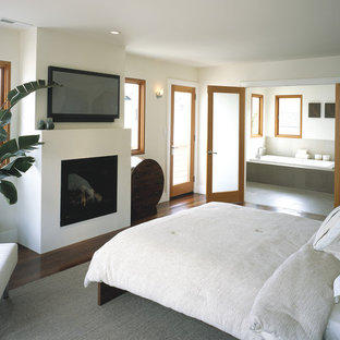 Inspiration for a contemporary medium tone wood floor bedroom remodel in San Francisco with beige walls and a standard fireplace
