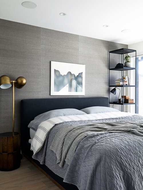 Bedroom Design Ideas Remodels Amp Photos With Light