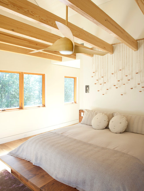 Inspiration For A Contemporary Master Light Wood Floor Bedroom Remodel In  New York With White Walls