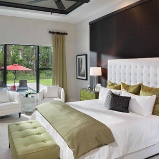 Bedroom - mid-sized transitional master carpeted bedroom idea in Orlando with gray walls
