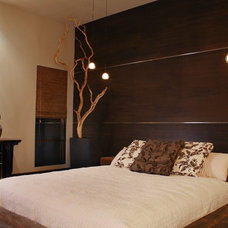 Contemporary Bedroom by ELEVATE interiors + design