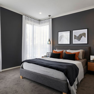Photo of a mid-sized contemporary master bedroom in Melbourne with black walls, carpet and grey floor.