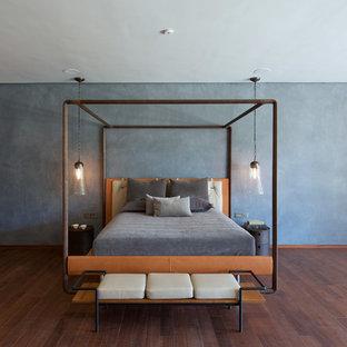 Foto de dormitorio actual, grande, con paredes azules y suelo de madera oscura