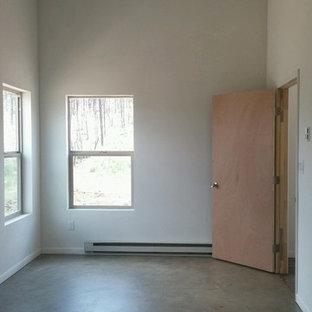 Imagen de dormitorio principal, tradicional renovado, pequeño, con paredes blancas, suelo de cemento y suelo gris