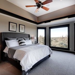 Transitional bedroom photo in Minneapolis