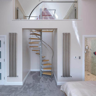 Photo of a small contemporary loft-style bedroom in Other with multi-coloured walls, carpet and grey floor.
