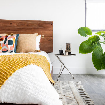Eclectic Modern - Guest Bedrooms