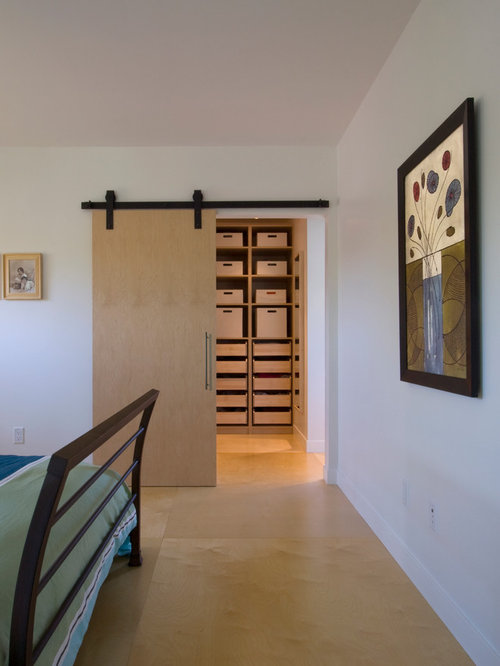 Modern bedroom design ideas remodels photos with for Bedroom designs plywood