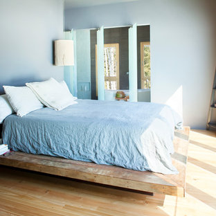 Example of a trendy light wood floor bedroom design in Other with blue walls