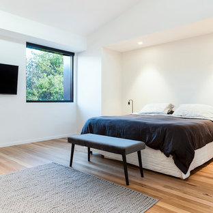 Design ideas for a mid-sized contemporary loft-style bedroom in Sydney with white walls and medium hardwood floors.