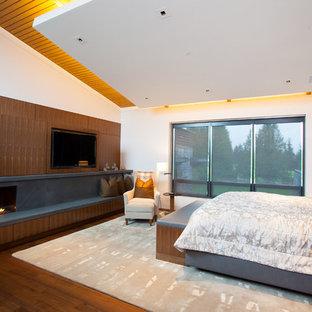 Diseño de dormitorio tipo loft, actual, grande, con paredes blancas, suelo de madera en tonos medios, chimenea lineal y marco de chimenea de piedra