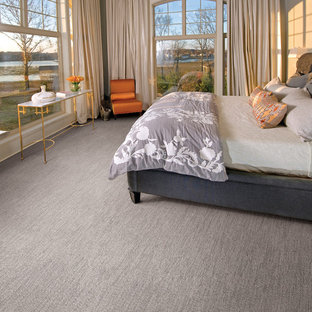 This is an example of a transitional master bedroom in Minneapolis with grey walls, carpet and no fireplace.