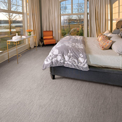 Bedroom - transitional master carpeted bedroom idea in Minneapolis with gray walls and no fireplace
