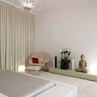Trendy carpeted bedroom photo in New York with white walls and no fireplace