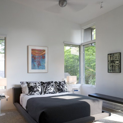 Inspiration for a modern carpeted bedroom remodel in Austin with white walls