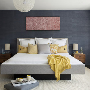 Photo of a medium sized contemporary master bedroom in Boston with blue walls and dark hardwood flooring.