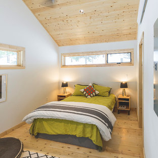 Inspiration for a rustic light wood floor and beige floor bedroom remodel in Other with white walls