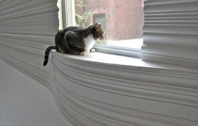 室内飼いの猫に優しい家をつくる10のアイデア