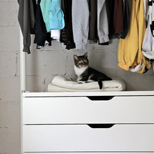 10 Easy Tips to Keep Your Cat Happy at Home