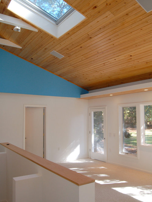 Expansive Elliptical Skylight With Concealed Lighting Home Design Ideas Renovations amp Photos