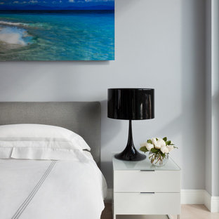 Inspiration for a mid-sized contemporary master ceramic tile bedroom remodel in Miami with gray walls