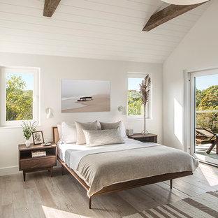 Idee per una piccola camera degli ospiti minimalista con pareti bianche, parquet chiaro, camino ad angolo e cornice del camino in metallo