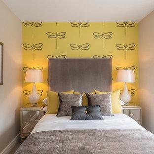 ダブリンの小さいトラディショナルスタイルのおしゃれな寝室 (黄色い壁) のインテリア