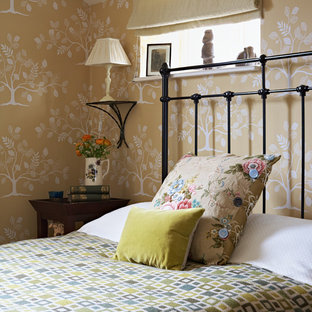 Bedroom - small traditional guest bedroom idea in Dorset with multicolored walls