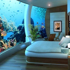 Bedroom giant tank wall