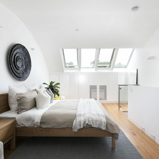 This is an example of a mid-sized contemporary loft-style bedroom in Other with white walls, medium hardwood floors and brown floor.