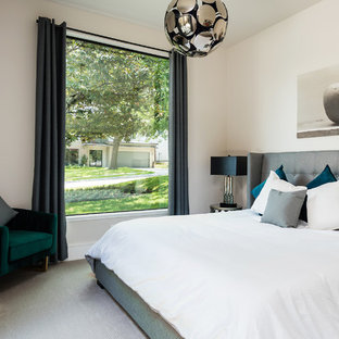 Bedroom - mid-sized contemporary guest carpeted and gray floor bedroom idea in Dallas with white walls