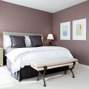 Imagen de dormitorio contemporáneo, de tamaño medio, sin chimenea, con paredes púrpuras y moqueta