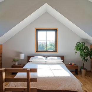 Example of a country medium tone wood floor bedroom design in Minneapolis with white walls