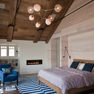 This is an example of an eclectic bedroom in New York with medium hardwood floors and a ribbon fireplace.
